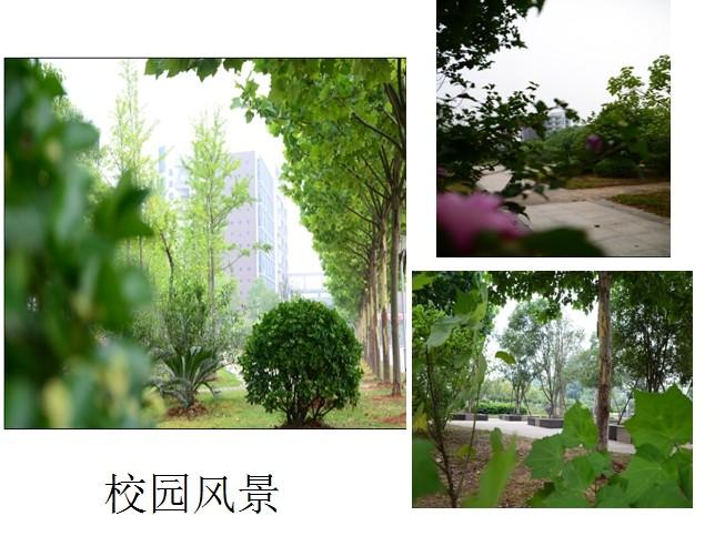 长江职业学院校园风光